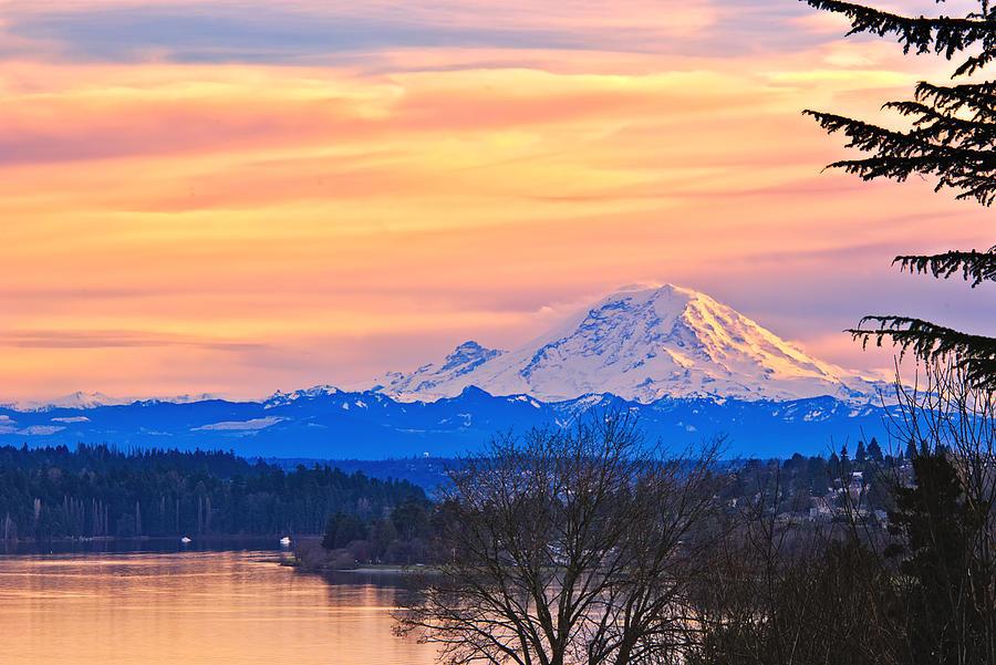 爱西雅图生活的点点滴滴 - 蓮花仙子 -