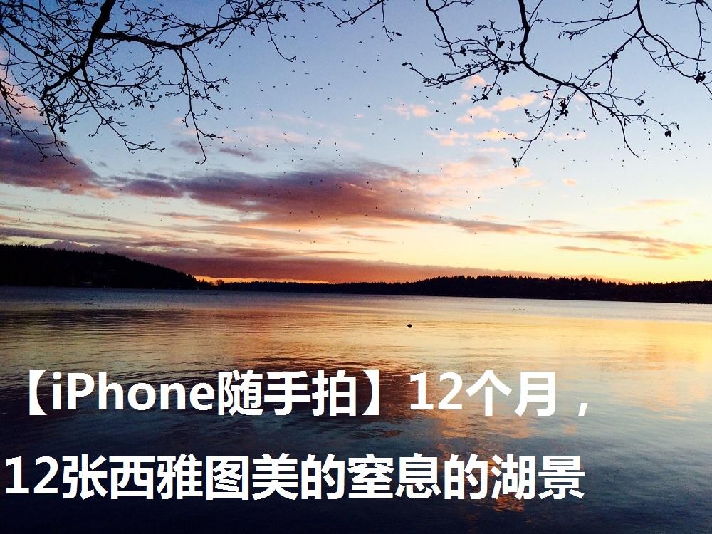 【iPhone随手拍】12个月,12张西雅图美的窒息的湖景